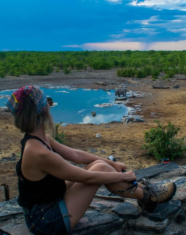 safari namibia etosha