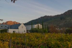 roteiro vinícolas africa do sul