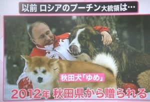 プーチン大統領と秋田犬