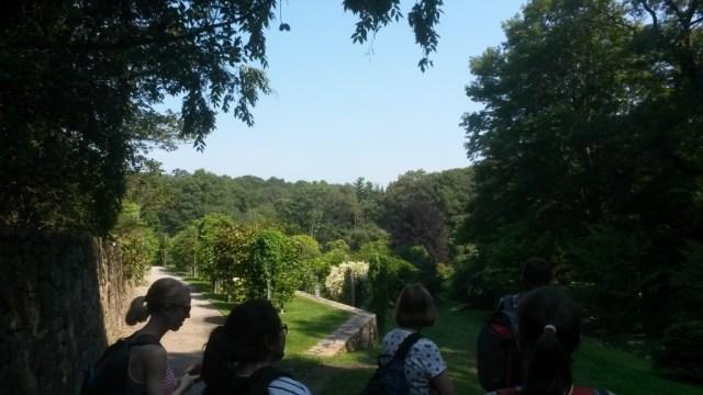 Overlooking Vine and Shrub Garden