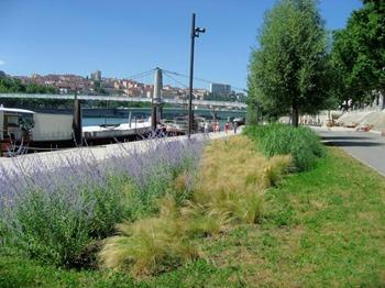 Les berges du Rhône réaménagées, à Lyon