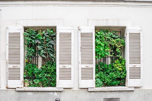 contempler la végétalisation urbaine