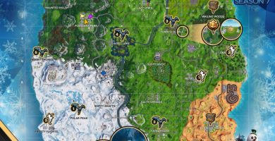 Fortnite search between a giant rock man, crowned tomato and surrounded tree
