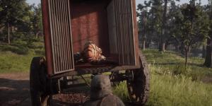 Red Dead Redemption 2: Donde encontrar el león, el tigre y la cebra