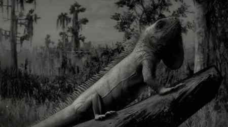 Red Dead Redemption 2: ¿Dónde encontrar Iguanas?