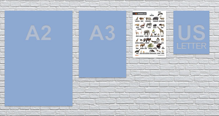 a4 animals poster