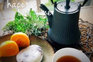 後発酵茶 プーアル茶