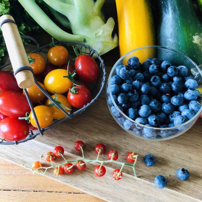 美しい野菜たち