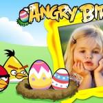 Fotomontaje de Angry Birds