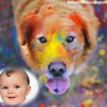 Fotomontaje de perro golden