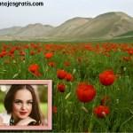 Fotomontaje de paisaje con flores y montaña