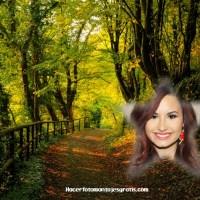Fotomontaje online de naturaleza