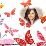 Fotomontaje gratis de mariposas