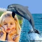 Crear fotomontaje con delfín