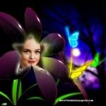 Fotomontaje de mariposas de fantasía