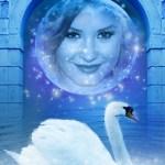 Bonito fotomontaje de cisne
