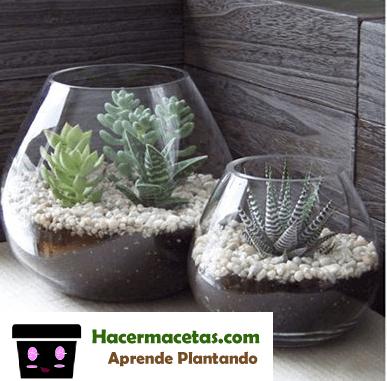 Mini Jardines hechos con copas rotas