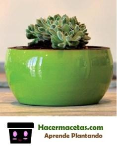 maceta verde de ceramica