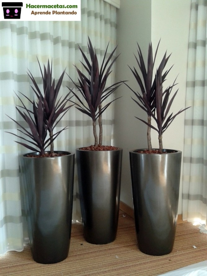 Macetas de aluminio con plantas