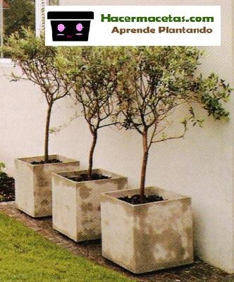 High Quality Simple Macetas Para Arboles Frutales With Como Hacer Un Macetero Grande.