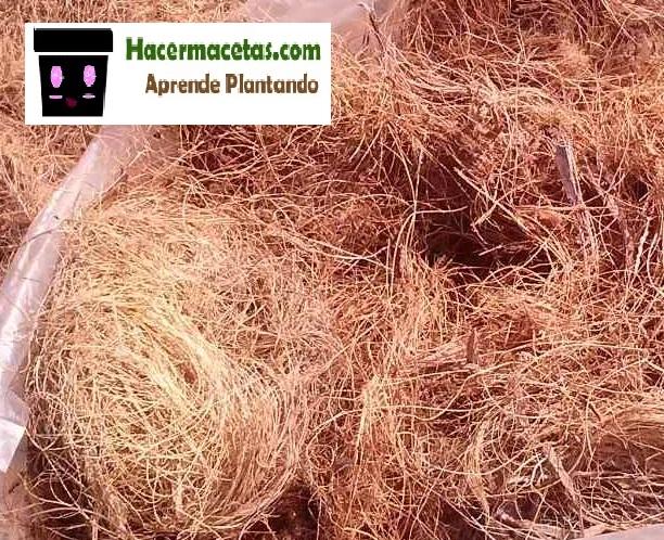 fibras de coco