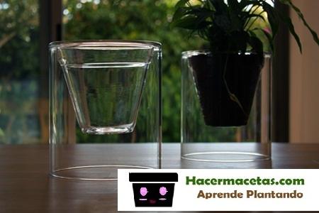 Macetas de Vidrio especiales para orquideas