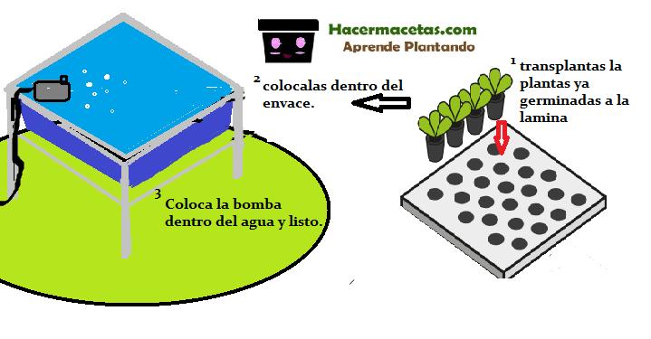 paso numero 3 finalmente coloca las plantas y las bomba en su lugar