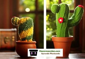 decora tus espacios con cactus echos a mano
