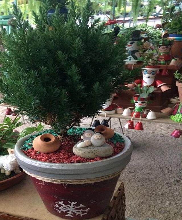 Maceta con pino y jardin navideño