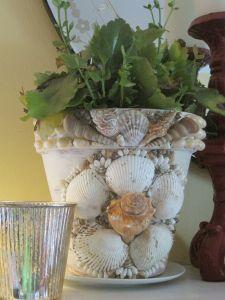 macetas decoradas con conchas marinas bellas