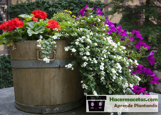 Maceteros de madera con barriles de vino reciclados lindas flores
