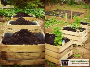 macetas de madera para huerto