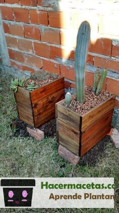 macetas para cactus echas de madera
