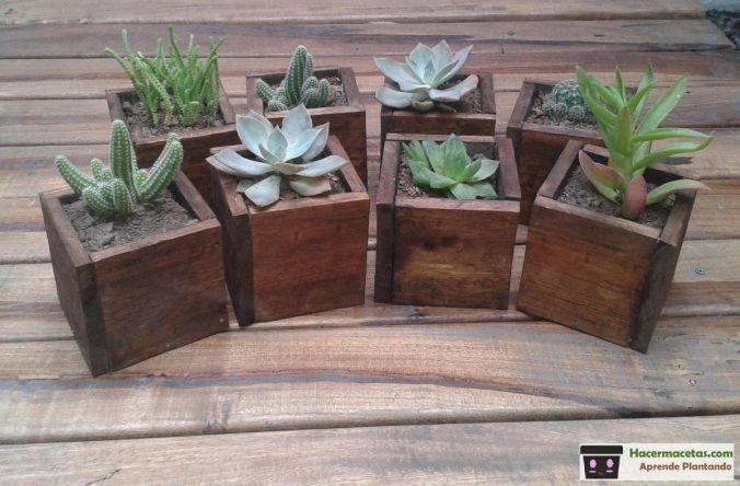 mini macetas de madera