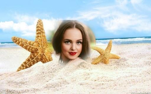 estrellas mar