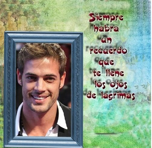 marco c frase
