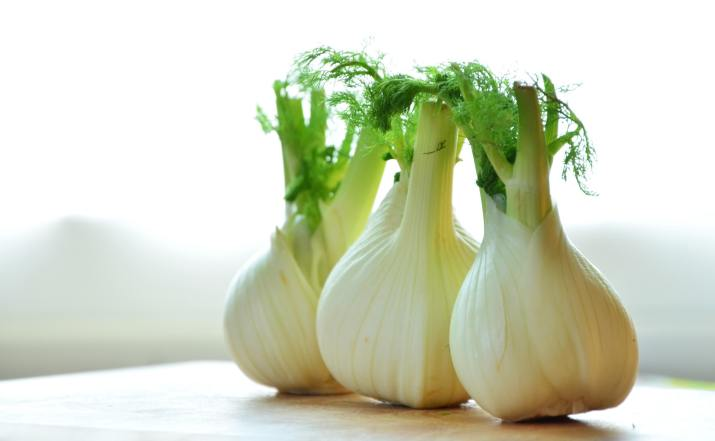 fennel-vegetables-fennel-bulb-food-159471.jpeg
