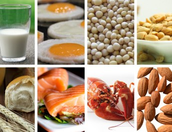 Milk, eggs, soy, peanuts, almonds, lobster, salmon, wheat