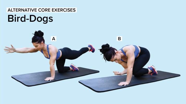 Alternative Core Exercises:: Bird-Dogs
