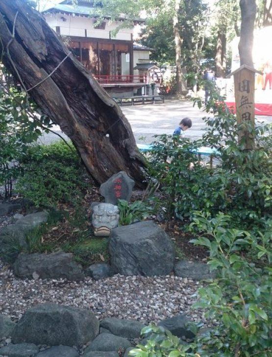 田無神社の水神宮