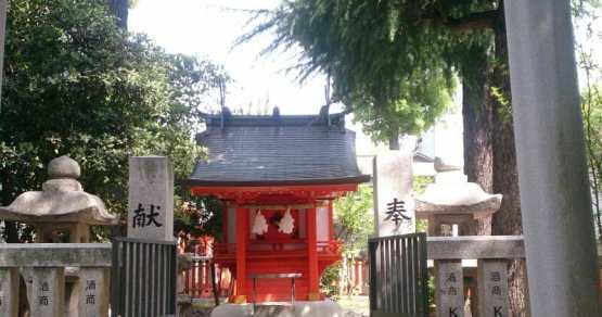生田神社の縁結びのパワースポット松尾神社の杉の木