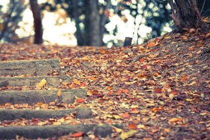 古風な名前 女の子に季節(秋・冬)を感じる名前をつけるなら?