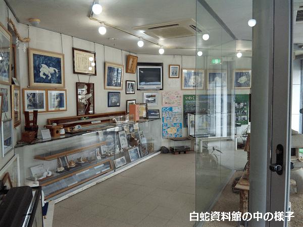 白蛇資料館の屋内展示