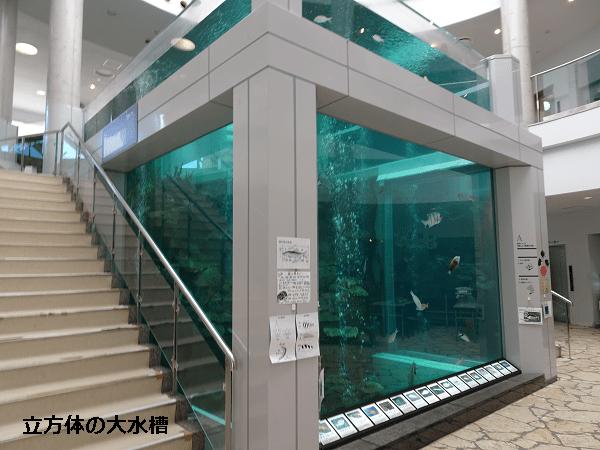 立方体の大水槽
