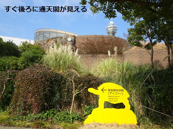 天王寺動物園アイファー外観
