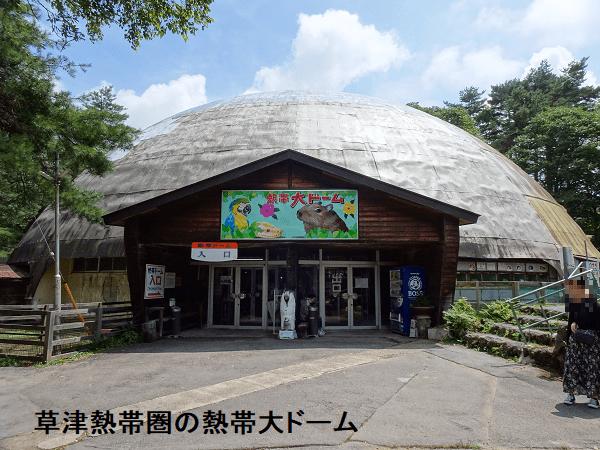 草津熱帯圏の熱帯大ドーム