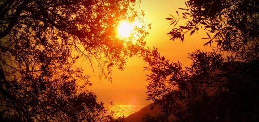 www.haciadios.com Consagración Día 2
