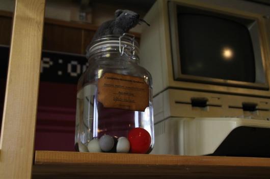 Our favorite: Pickled Mouseballs.