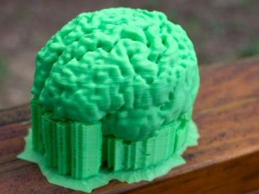 brainprint1
