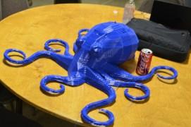 The standard octopus